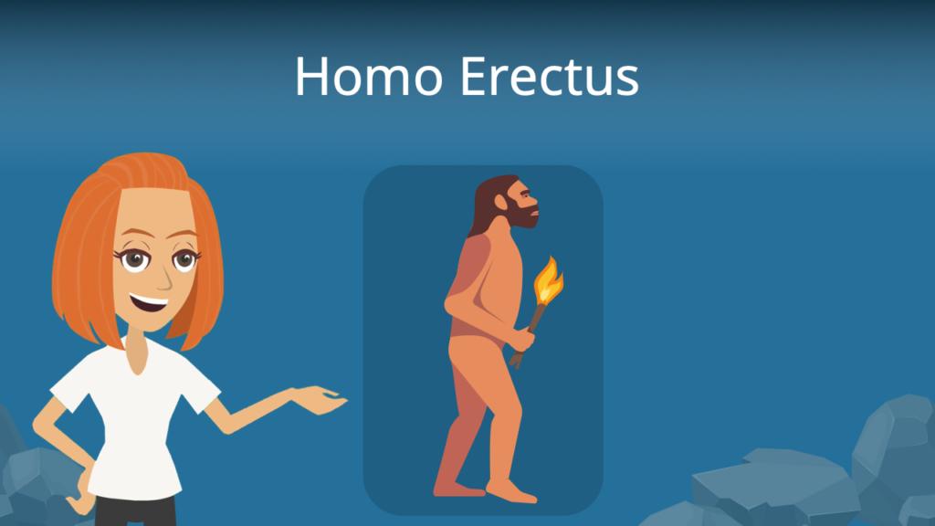 Zum Video: Homo erectus
