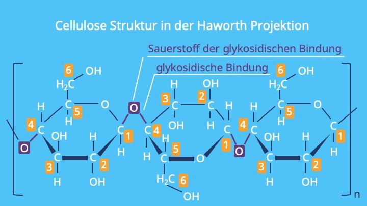Cellulose Strukturformel, Strukturformel Cellulose, Zellulose, Cellulose Aufbau