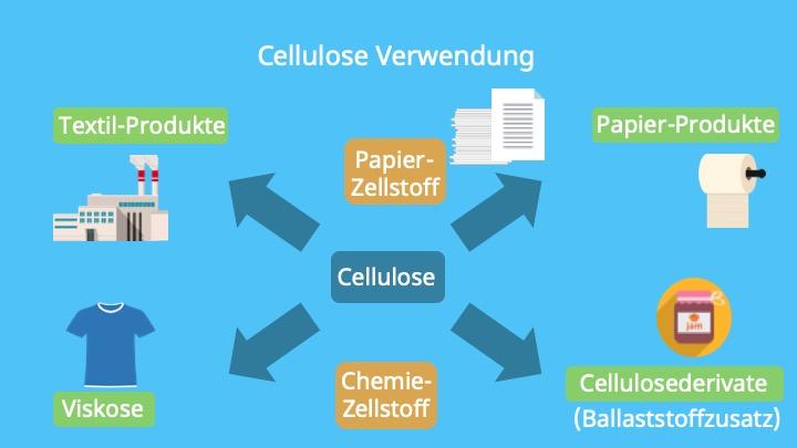 Cellulose Papier, Baumwolle, Zellulosefasern, Was ist Cellulose