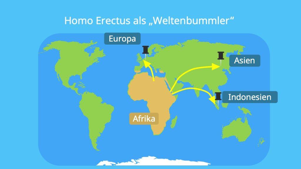 Homo erectus Lebensraum, Homo erectus verbreitung, Landkarte, Fossilen, fundorte, Frühmensch