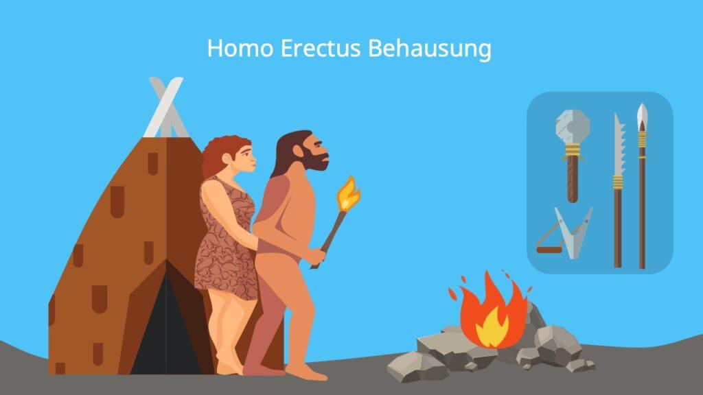 Homo erectus behausung, Feuer, Werkzeuge, Jagd, fleisch, Kooperation, Frühmensch
