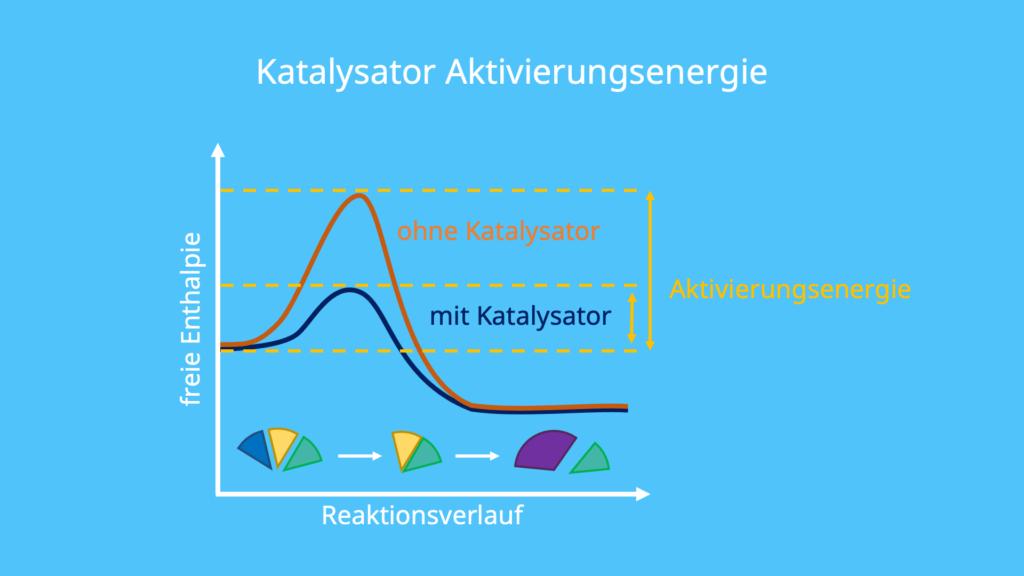 Katalysator Energiediagramm, Katalysator Funktion, Was bedeutet katalysieren, chemische Katalysatoren, Katalysatoren Biologie, Katalysatoren Chemie