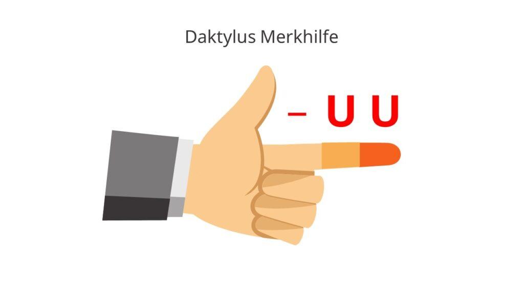 Daktylus, Daktylus bestimmen