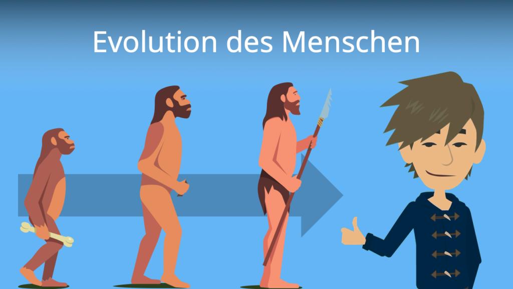 Zum Video: Evolution des Menschen