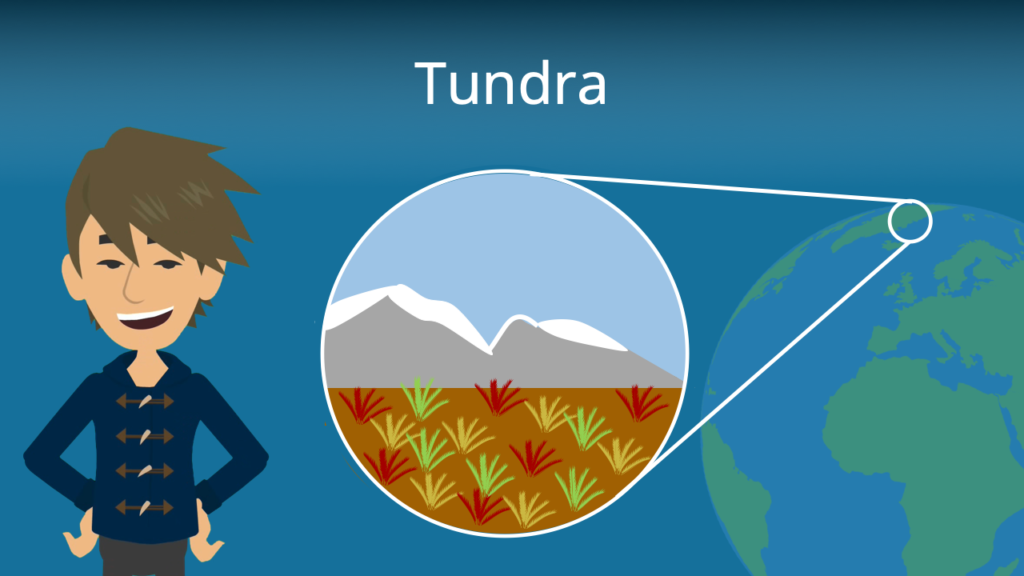 Zum Video: Tundra