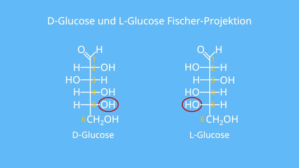 D Glucose, Glucose Strukturformel, Zuckermolekül, Was ist Glucose, Glucose Aufbau, Traubenzucker Formel, Was ist Traubenzucker