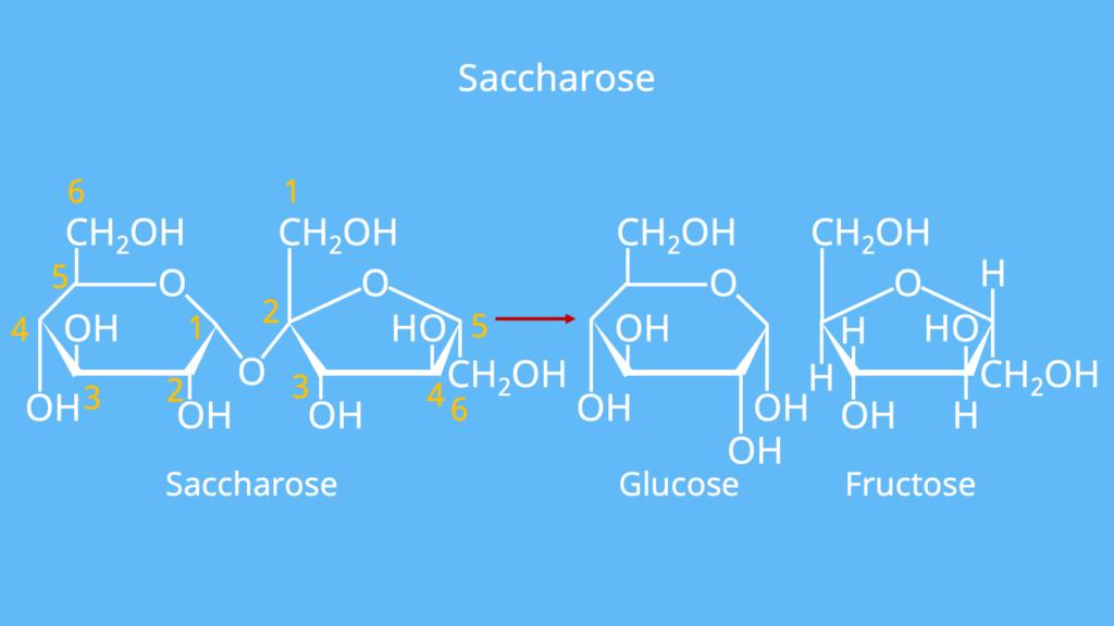 D Glucose, L Glucose, Zuckermolekül, Was ist Glucose, Stärke