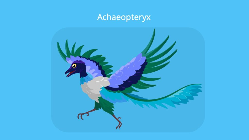 Brückentiere Beispiele, Archaeopteryx, Vogel evolution, Reptilienmerkmale, Belege für die Evolution