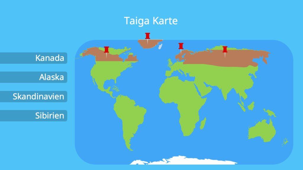 sibirischer Waldgürtel, Alaska, Kanada, Taiga Russland, Sibirien