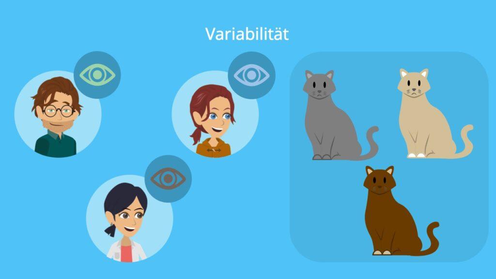 Variabilität, genetische Variabilität, Variabilität Biologie, Art Biologie, Variabilität Evolution