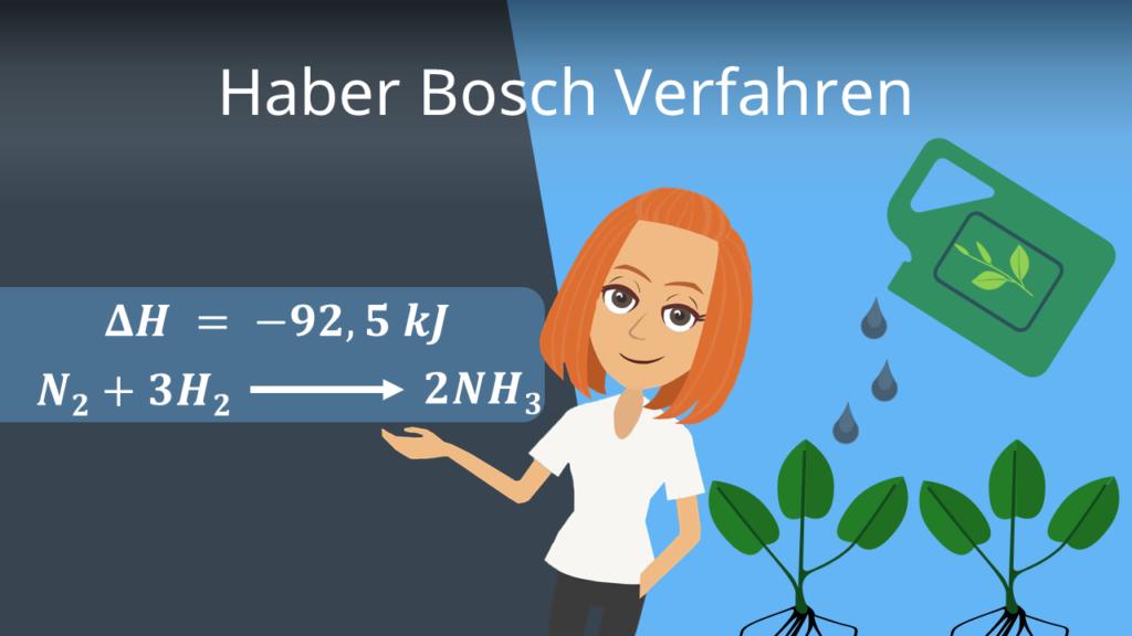 Zum Video: Haber Bosch Verfahren