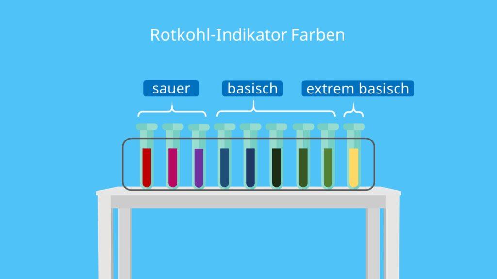 Rotkohl als Indikator, Rotkohlsaft als Indikator, Indikator Farbe