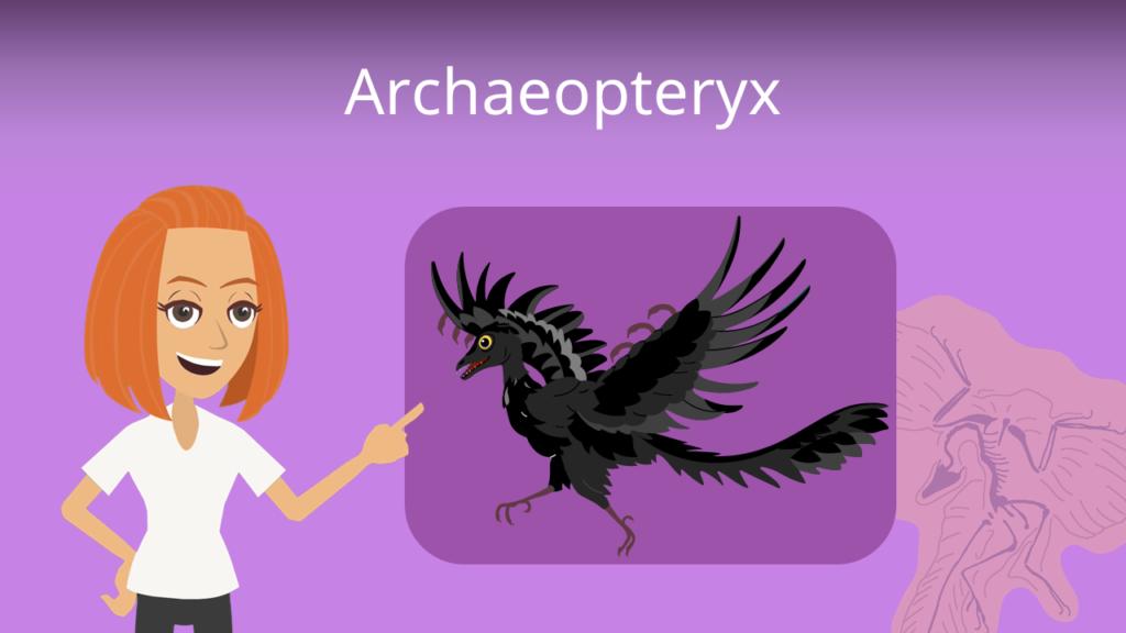 Zum Video: Archaeopteryx
