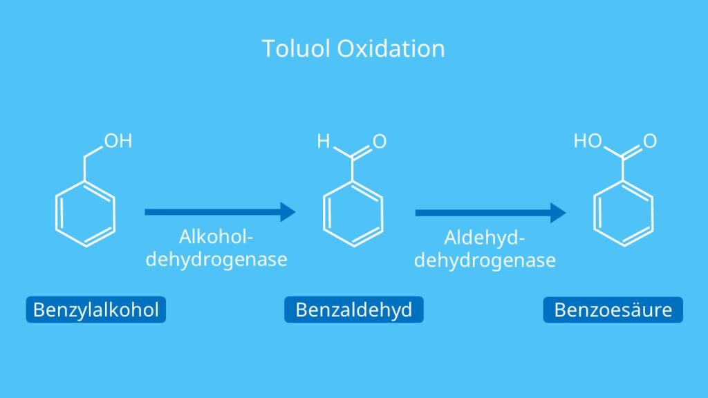 Toluol Oxidation, Toluene, Methylbenzol, Bromierung von Toluol, Methylbenzen, C6H5CH3