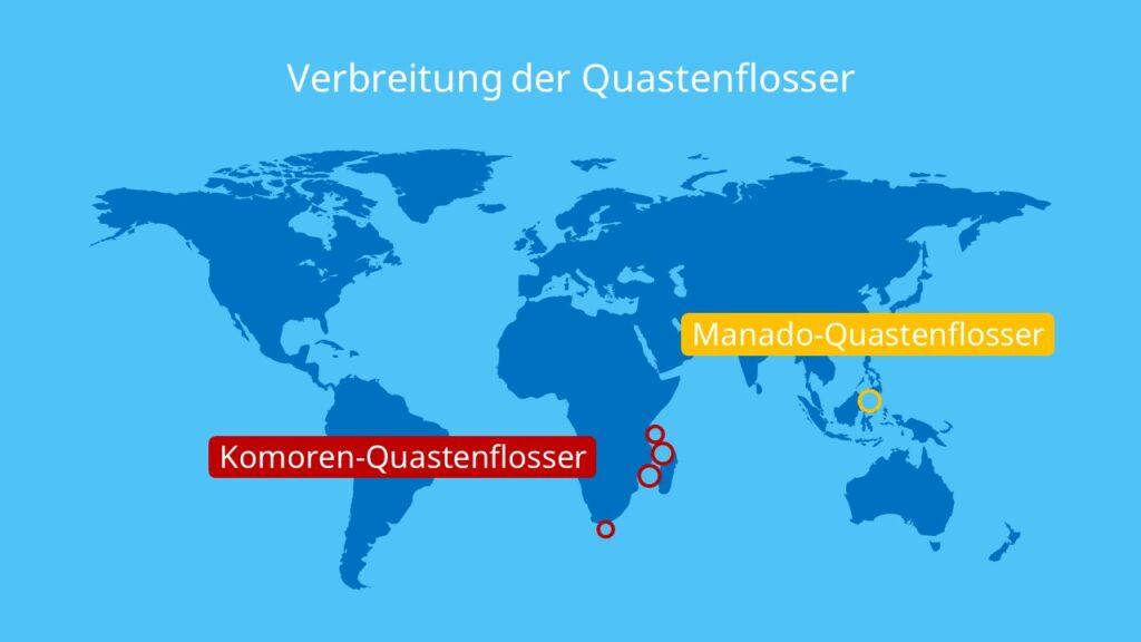 Verbreitung der Quastenflosser, quastenflosser, komoren quastenflosser, manado quastenflosser, quastenflosser lebendes fossil, latimeria, latimeria chalumnae, coelacanth, coelacanths