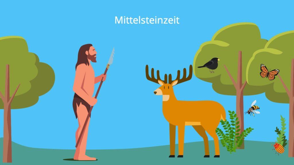 Steinzeit Werkzeuge, steinzeit tiere, wie lebten die Menschen in der Steinzeit, Mittelsteinzeit