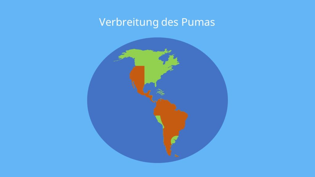 Verbreitung puma, lebensraum puma, berglöwe, silberlöwe, puma concolor