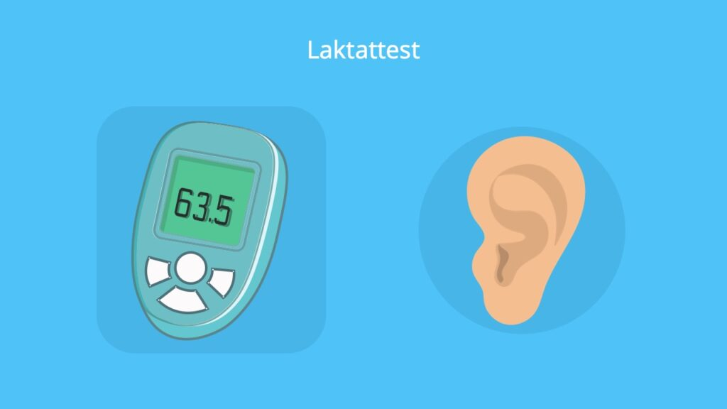 lactat normwert, lactat normwerte, lactat test, laktat normwert, laktat test, laktattest, laktatwert, laktatwert zu hoch, laktatwerte, laktatwerte sport, übersäuerter Muskel, erhöhte laktatwerte, laktat erhöht