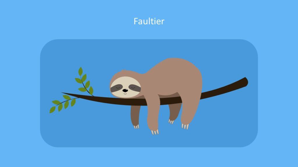 Bilder Faultier, Faultier Geschwindigkeit, lfaultier schlafen, warum sind faultiere so langsam, das faultier, faultiere zweifingerfaultier, dreifinderfaultier