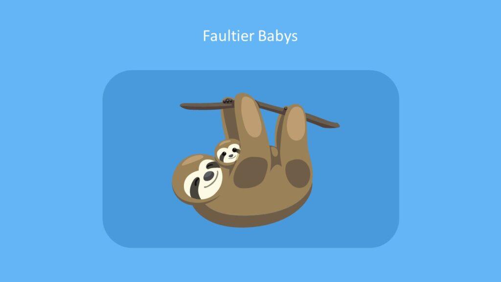 Faultier Babys, Faultier Baby, bilder Faultier