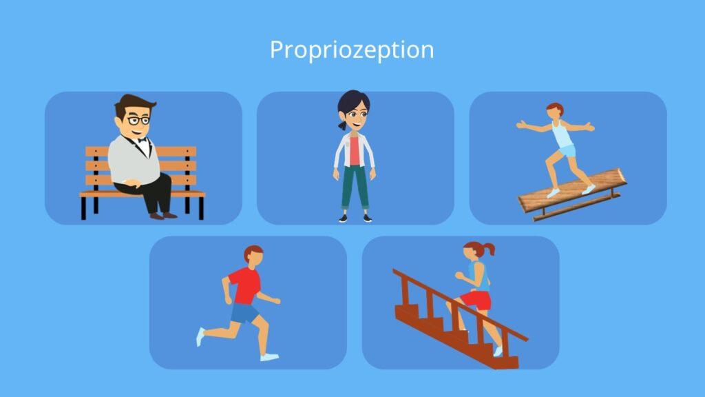 6. sinn, der 6. sinn, wie viele sinne hat ein mensch, 6 sinn, 6 sinne des menschen, was ist der 6 sinn, was ist der sechste sinn, alle sinne des menschen, propriozeption, proprioception, sechster sinn, propriozeptionstraining