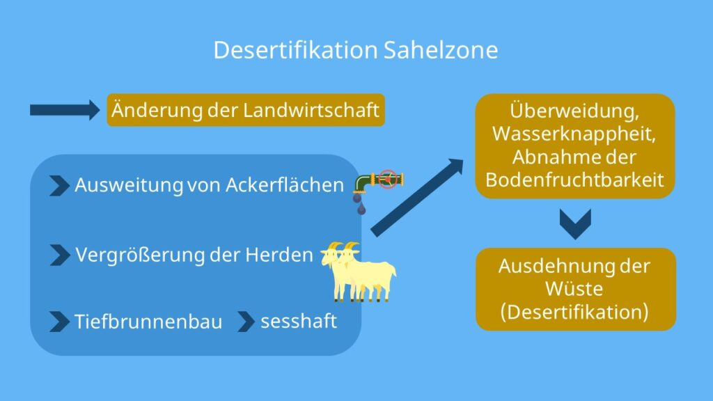 Desertifikation Sahelzone, Sahelzone Klima, Sahelzone Landwirtschaft, Wüstenbildung, halbwüste, dürreperioden