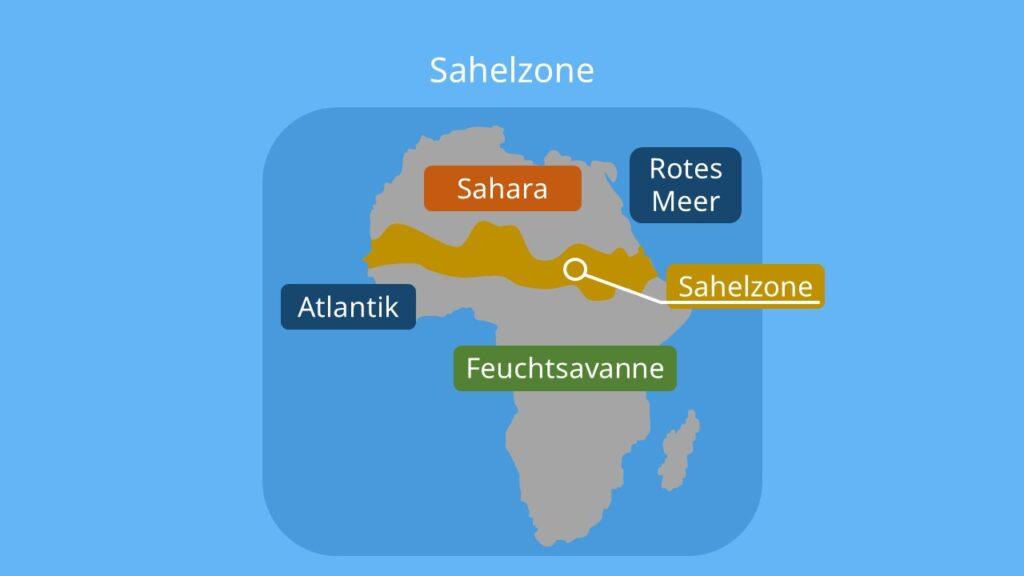 die sahelzone, was ist die sahelzone, sahelzone probleme, desertfikation, sahel region, sahelzone lage, vegetation