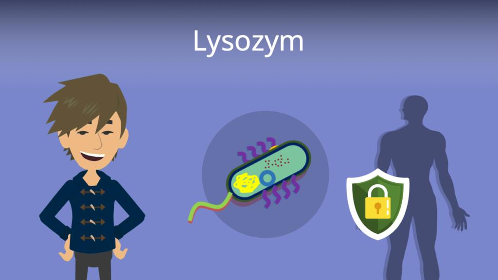 Zum Video: Lysozym