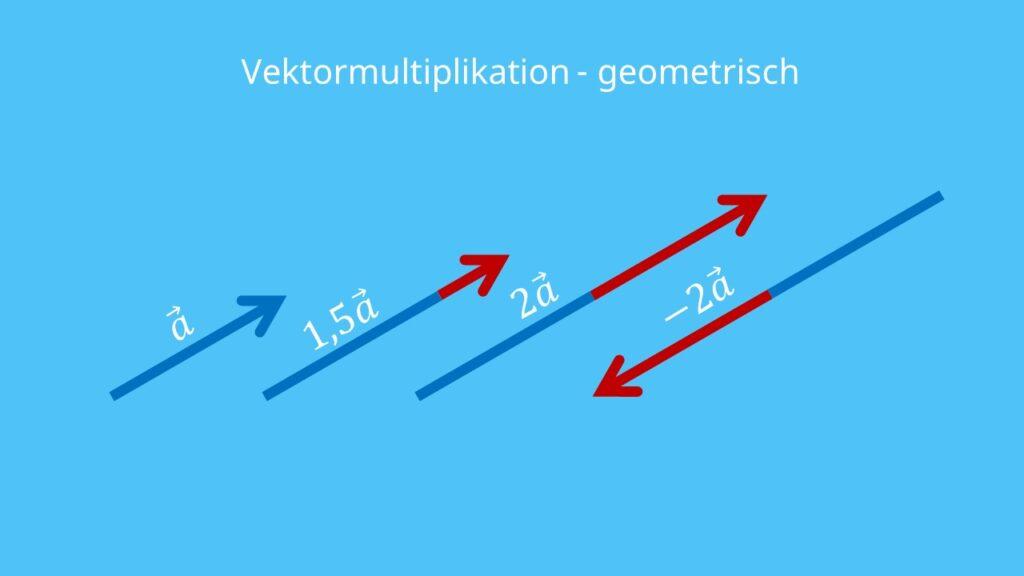 Vektorrechnung, Multiplikation, Skalarmultiplikation, skalare Multiplikation