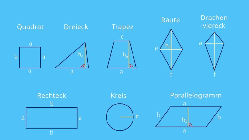 Flächenberechnung, Flächenberechnung Formeln, Flächenberechnung Dreieck, Flächenberechnung Kreis, Flächenberechnung Rechteck