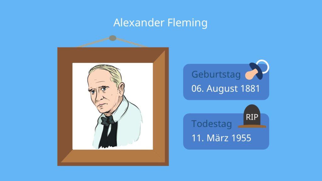 Alexander Fleming Penicillin, wann wurde penicillin erfunden, entdeckung des penicillin, fleming antibiotika, fleming nobelpreis,
