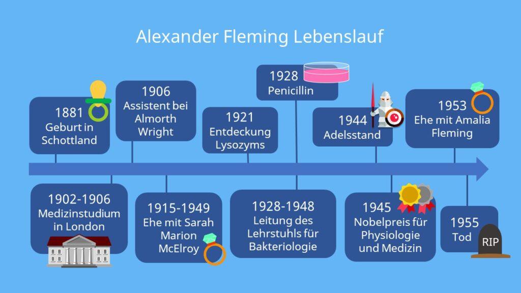 Alexander Fleming Penicillin, wann wurde penicillin erfunden, entdeckung des penicillin, fleming antibiotika, fleming nobelpreis, Alexander Fleming Steckbrief