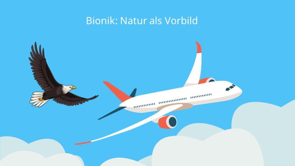 bionik, bionik beispiele, bionisch, bionik beispiele liste, was ist bionik, bioniker, biomimetik, bionik im alltag, bionische strukturen, bionik erfindungen, bionik geschichte, leonardo da vinci bionik, bionik fliegen, winglets bionik