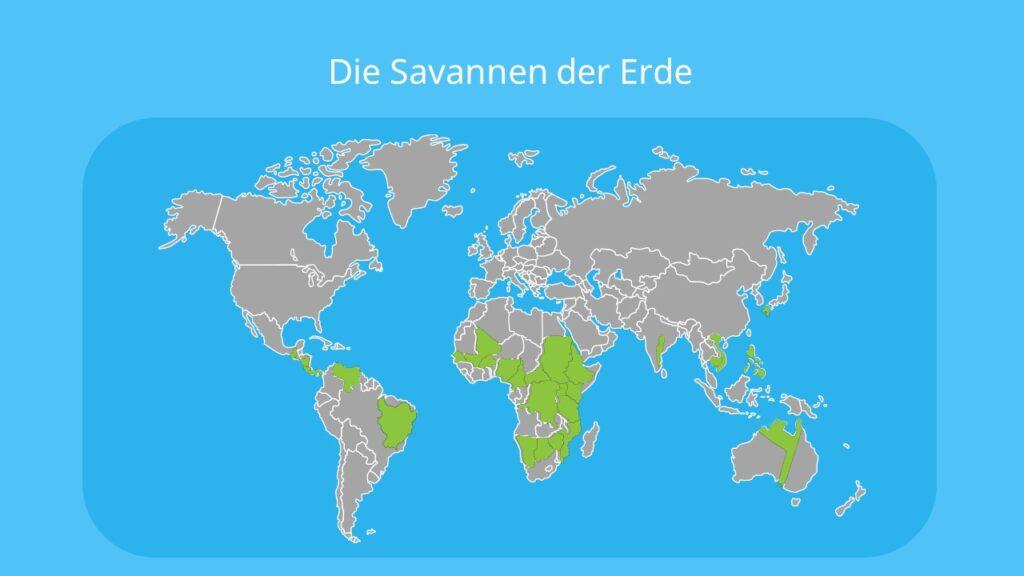 savanne, savanna, feuchtsavanne, trockensavanne, dornsavanne, dornstrauchsavanne, vegetationszone, savannen, savannenlandschaft, die savanne, savanne bilder, bilder savanne, savanne karte, savannen karte, savanne afrika karte