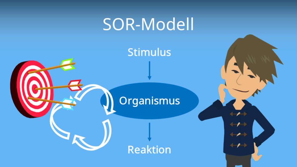 Zum Video: SOR-Modell