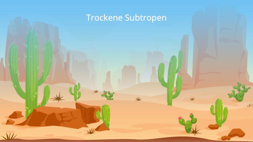 subtropische Zone, Subtropen, trockene Subtropen, subtropische Klimazone, subtropisches Klima, Landschaft Subtropen, Landschaft trockene Subtropen, Landschaft subtropische Zone