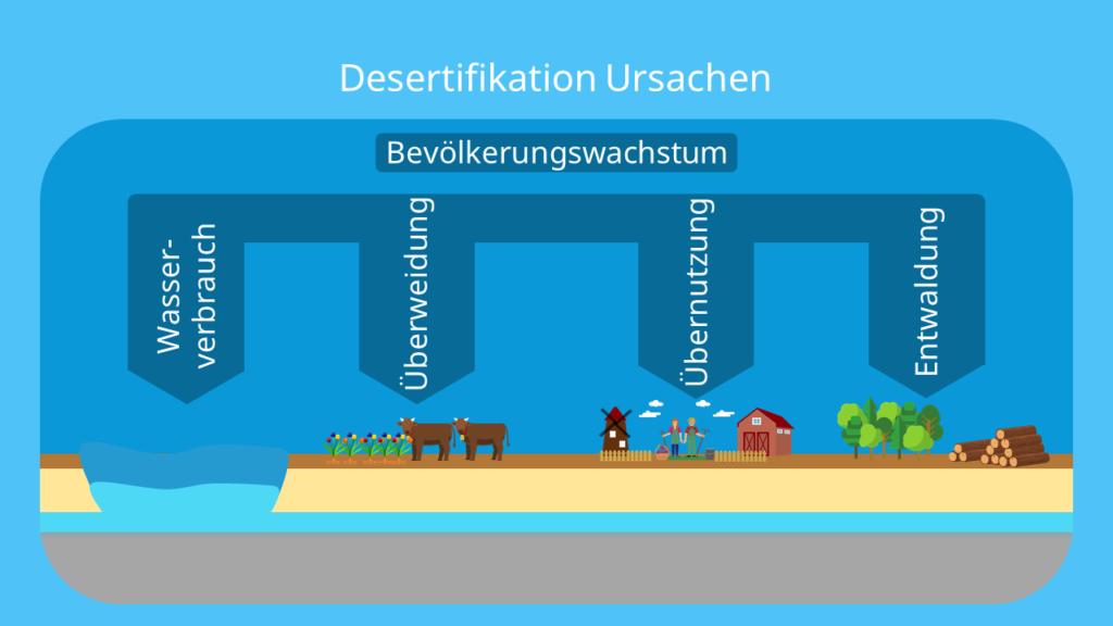 Desertifikation definition, desertifikation, ursachen, desertifikation sahelzone, was ist desertifikation, Wüstenbildung, unfruchtbare Fläche, Desertifikation folgen, Desertifikation schaubild