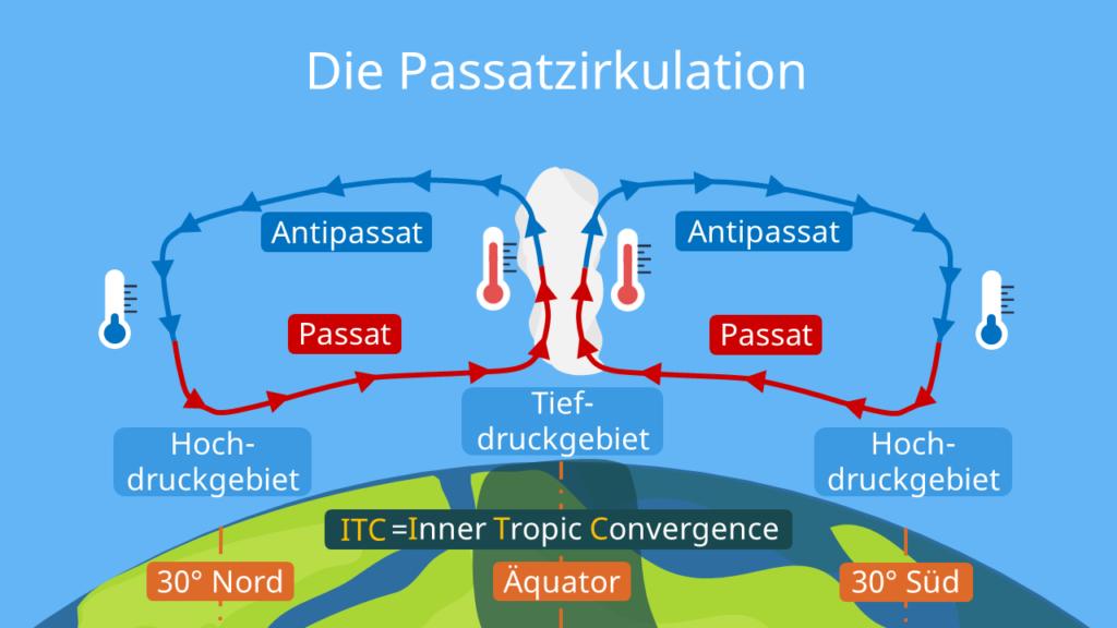 Passatzirkulation, Passatkreislauf, Passatzirkulation Skizze, Passatzirkulation Schaubild, Die Passatzirkulation, was ist passatzirkulation, passat, antipassat