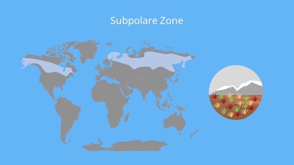 subpolare zone, klimazonen, klimazone, kalte zone, klimatypen, klima und vegetationszonen, klimazonen karte, klimazonen nach neef, was sind klimazonen, welche klimazonen gibt es, weltkarte klimazonen, eine klimazone, klima arten, klima zonen, klimazonen weltkarte, klimazonen welt, zonen der erde, die klimazonen, klimazone der erde, klimazonen merkmale, was ist eine klimazone, subpolare klimazone