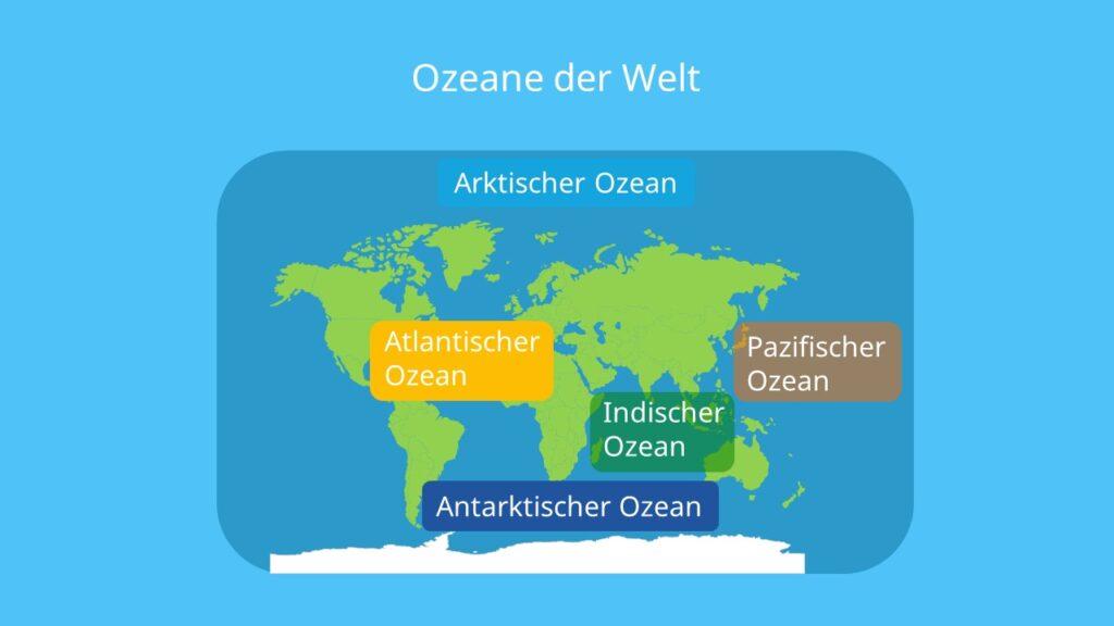 ozean, ozeane, weltmeere, ozeane der welt, größter ozean, 5 ozeane, wie viele ozeane gibt es, ozeane der erde, weltmeer, meere der welt, alle ozeane, wie viele weltmeere gibt es, atlantik pazifik, die ozeane, größtes meer, alle meere, kleinster ozean, ozeane karte, ozeane größe, welche ozeane gibt es, weltkarte ozeane, ozeanen, alle weltmeere, der ozean, größter ozean der welt, der kleinste ozean, karte ozeane, weltkarte mit ozeanen, ozeane weltkarte, wie heißen die ozeane