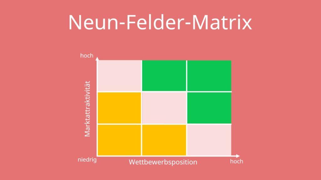 9 Felder Matrix